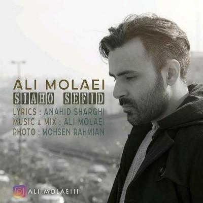 دانلود آهنگ جدید علی مولایی سیاه و سفید