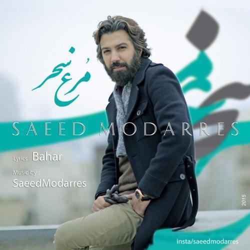 دانلود آهنگ جدید سعید مدرس مرغ سحر