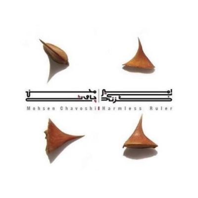 دانلود آلبوم جدید محسن چاوشی امیر بی گزند
