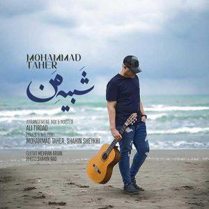 محمد طاهر شبیه من