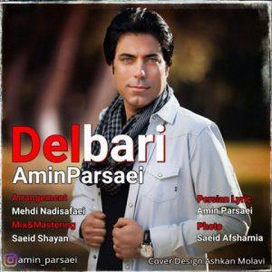 امین پارسایی دلبری Amin Parsaei Delbari
