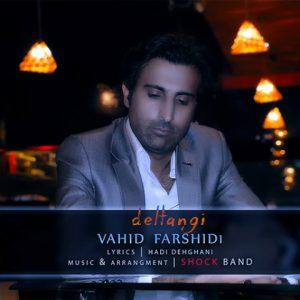 وحید فرشیدی دلتنگی Vahid Farshidi Deltangi