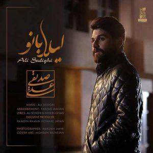 دانلود آهنگ صورت زیبای تو آرایش شهرو به هم زد - علی صدیقی لیلا بانو