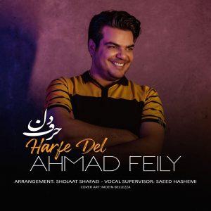 دانلود آهنگ عشقت توی دلمه میدونی - احمد فیلی حرف دل