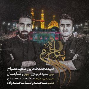 سعید مصباح و محمد طاهایی پناه حرم